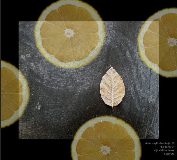 limon dijital kolaj